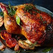 large chicken